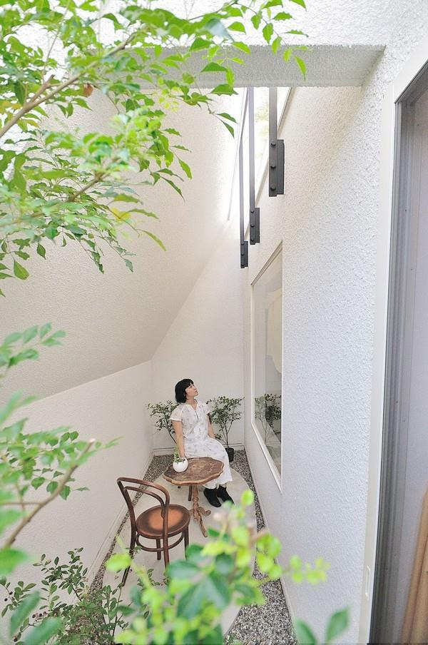 Awesome Home design with Unusual mini garden in Japan
