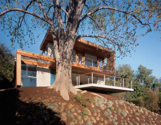 Contemporary Eco Friendly Tree House Design Ideas Front view