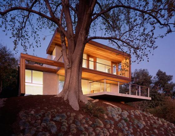 Contemporary Eco Friendly Tree House Design Ideas on night view