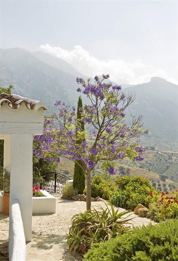 House with classical country style Design in Andalucia Spain