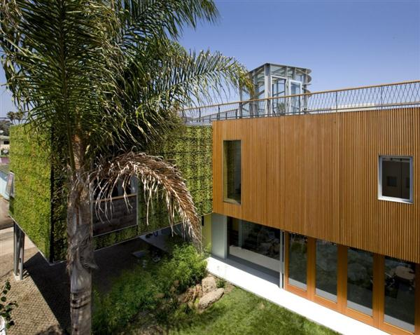 Modern Home with unique green wall by Bricault Design in Venice