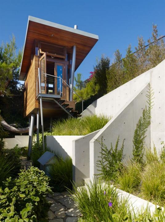 contemporary banyan tree house ideas