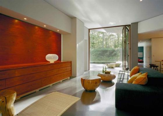 Contemporary Underground Home Design Ideas Main Room
