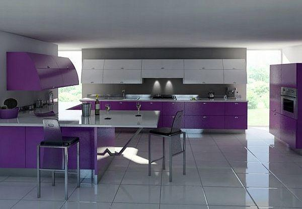 Contemporary Violet Kitchen Decorating Inspiration match with white themes