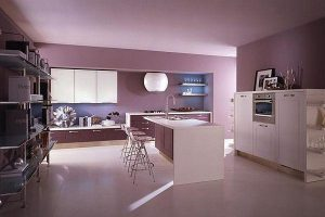 Contemporary Violet Kitchen Decorating Inspiration pinky themes