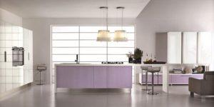 Kitchen with Contemporary Violet Interior Design Ideas inspirartion