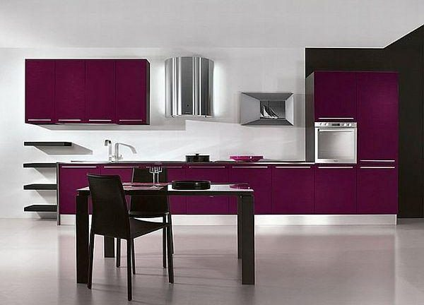 elegant Contemporary Violet Kitchen Decorating Inspiration