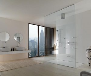 Elegant and Modern Showers Bathroom Decor Appliance with minimalist decor