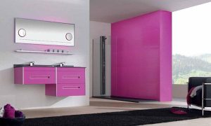 Elegant and Modern pink Showers Bathroom Decor Appliance