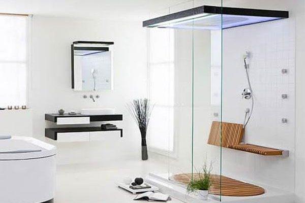 Elegant and Modern Showers Bathroom Decor Appliance