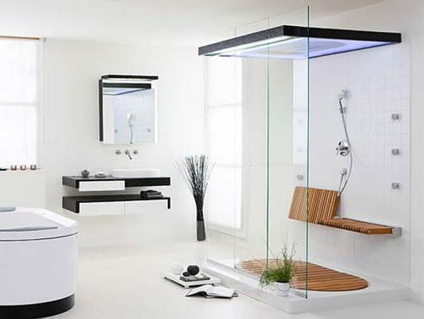 Simply Elegant and Modern Showers Bathroom Decor Appliance